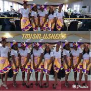 Tmisin ushers Logo
